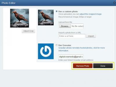 FAQ_Avatar6.jpg